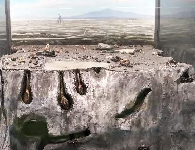 有明海の干潟の生物