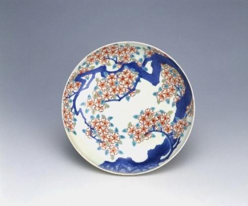 色絵桜樹文皿