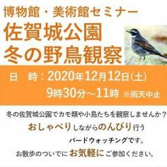 博物館・美術館セミナー「佐賀城公園 冬の野鳥観察会」