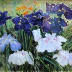 コレクション展「咲いた!花の絵」