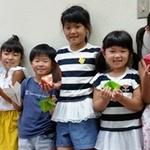 夏休みこどもミュージアム2017「折り紙教室(1)」を開催しました!