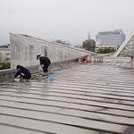 県立博物館屋上に溜まったホコリやよごれを採取する集団?!