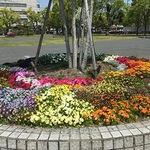 佐賀城公園は春の花々が満開!ピクニック日和です♪