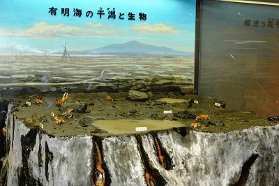 1号展示室自然史2