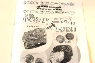 化石クリーニングテキスト