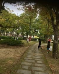 城南豊夢学園の皆さんによる清掃の様子2